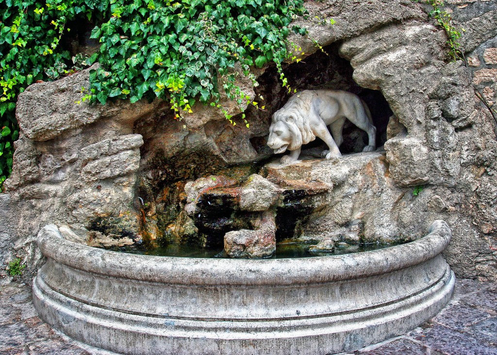 Fontana del leonenuova